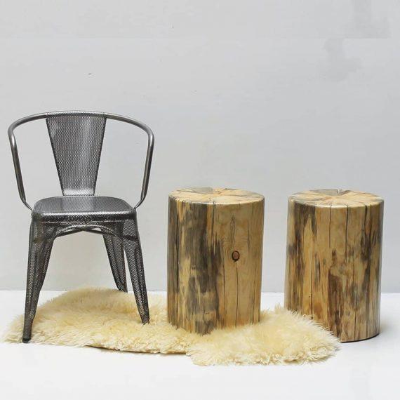 Pine Tree Stump